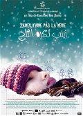 Zaineb n'aime pas la neige poster
