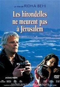 Les hirondelles ne meurent pas à Jérusalem poster